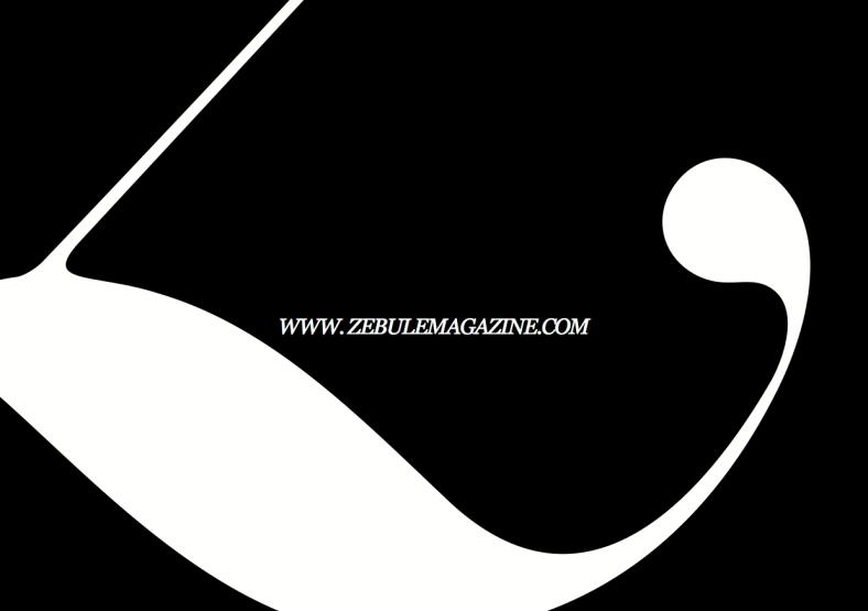 _last image_DP_ZEBULE_SP-1